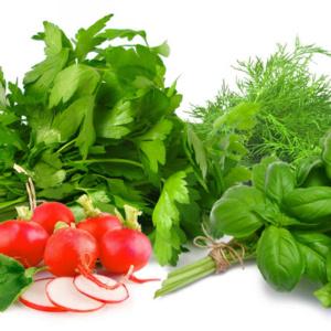 بذر سبزیجات ایرانی/iraanse kruiden zaden